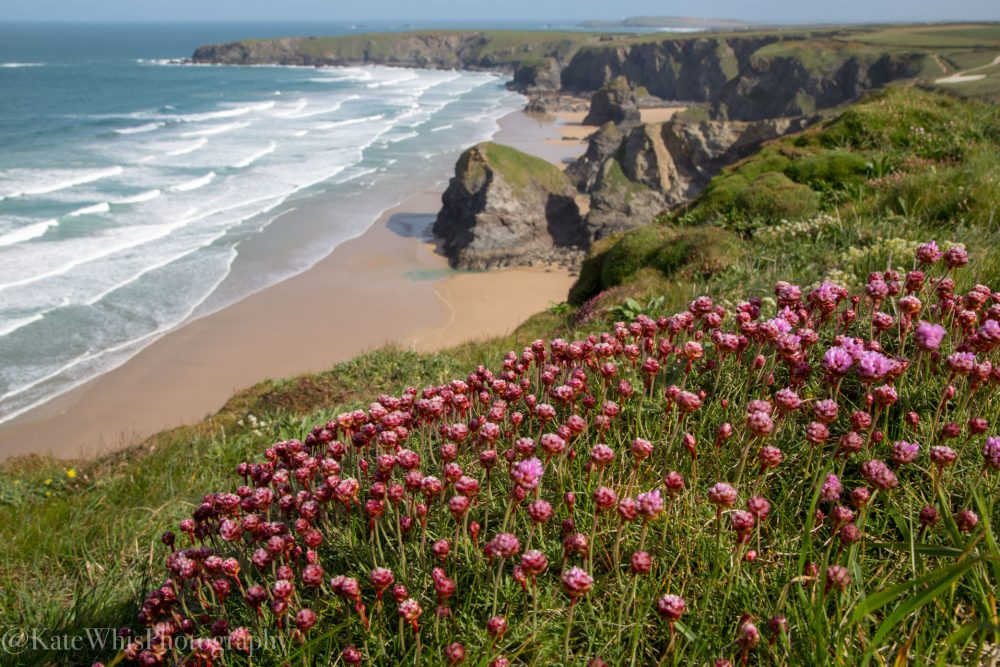 view across Bedruthan Steps