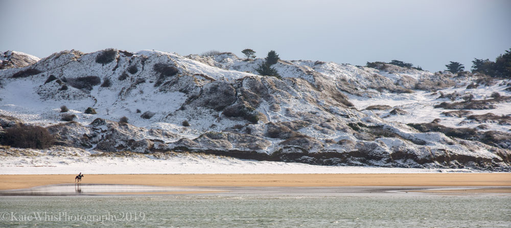 Horses riding on Rock beach in the snow