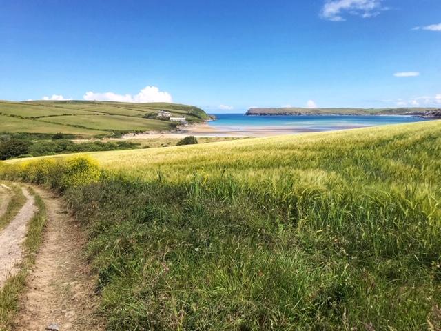 View down the lane to Tregirls beach