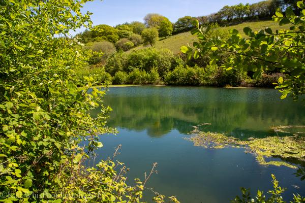Lake at The Oaks