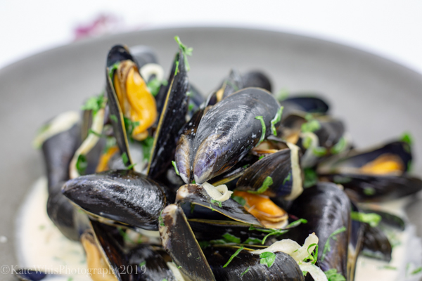 close up of a bowl of mussels